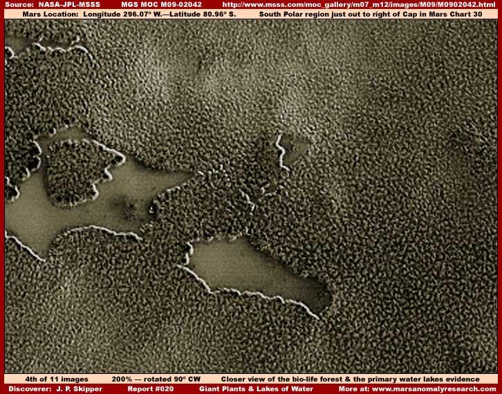 Mars : De bien étranges clichés... 04-020-lakes-forests-close