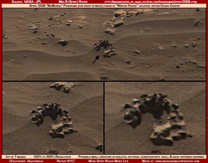 MARS SPIRIT ROVER MIXED LIFEEvidence Of Life On Mars