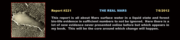"Click here to access ""The Real Mars"" report."